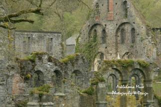 51. Abbaye Ruins