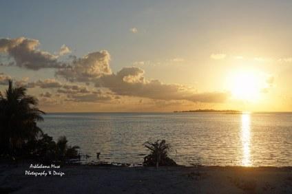Good Morning Mangrove Cay