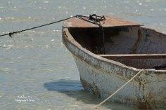 Still Seaworthy