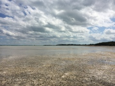 Low Tide on the Bonefish Flats