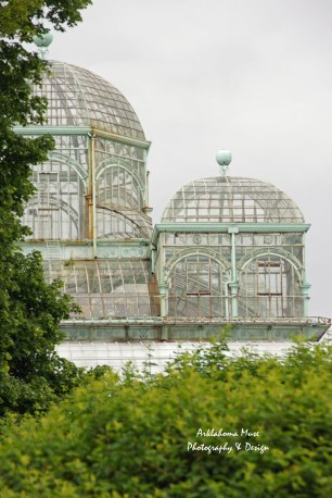 Greenhouses through the trees