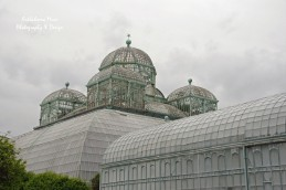 Art Nouveau Greenhouse