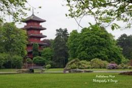 The Japanese Pavilion