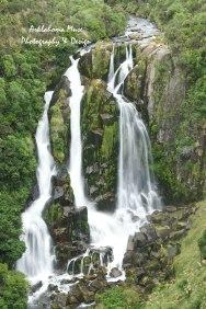 Waipunga Falls - https://pixels.com/featured/waipunga-falls-nz-brandy-herren.html