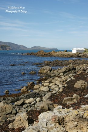 Reef Bay Boathouse