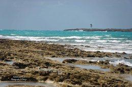 Clifton Beach on a Windy Day