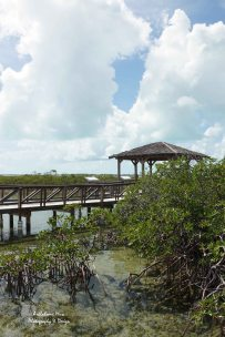 Bonefish Pond Gazebo