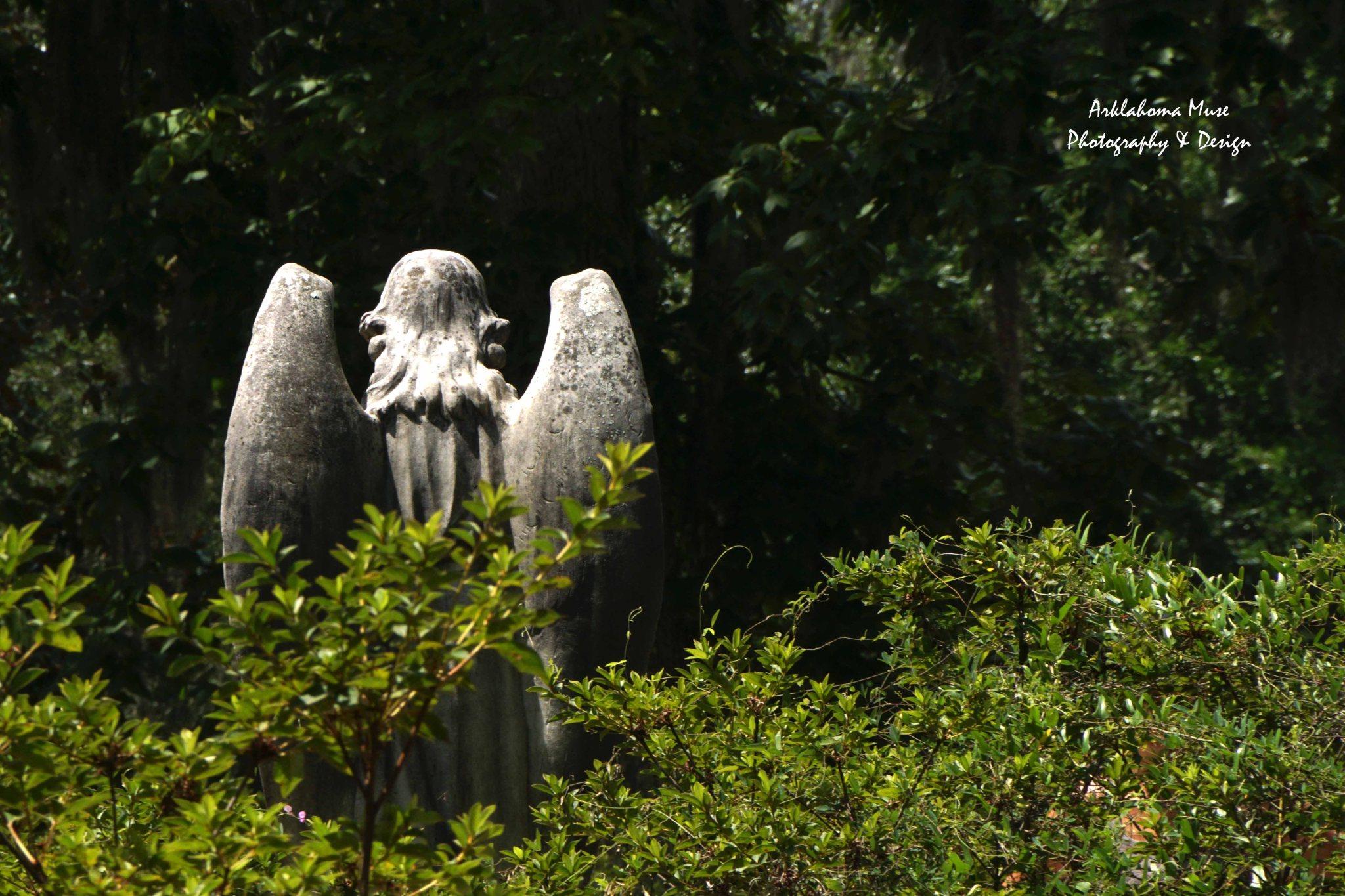 Angel, or...?