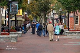Strolling and Shopping on Loudoun Street