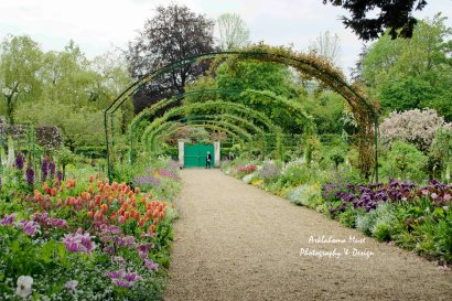Main Garden Path