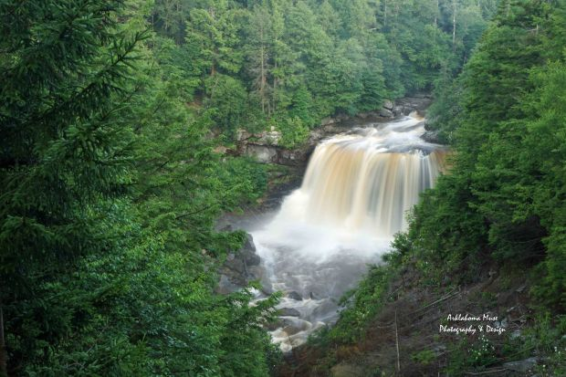 Blackwater Falls in the Morning